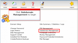 direct admin add subdomain01