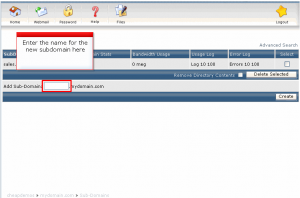 direct admin add subdomain02
